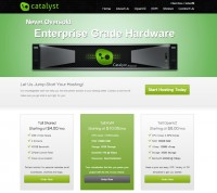 [TX] Catalyst-Limited 10-1GB KVM, 60GB RAID10/SSD Cached Storage, 3TB Bandwidth for $7