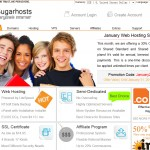 Sugarhosts coupon - New Year Special - 20% OFF